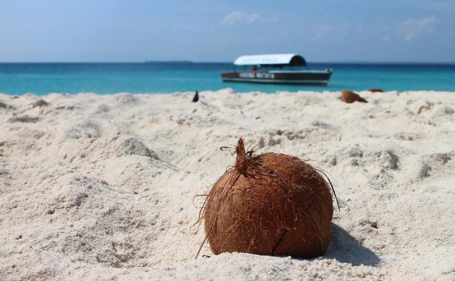 Kokos w materacu – dlaczego warto